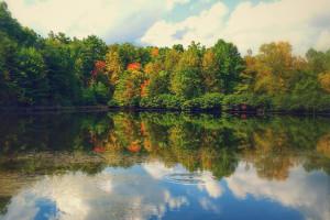 1617865_ _o Fall lake crop 640x247x